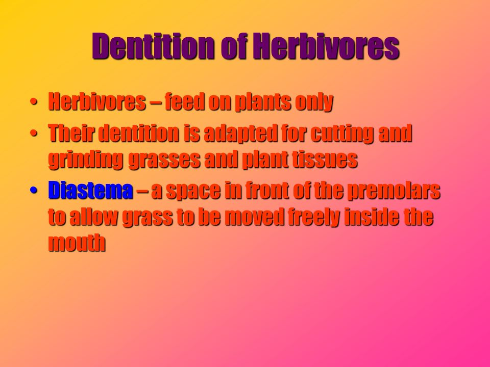 Dentition of Herbivores