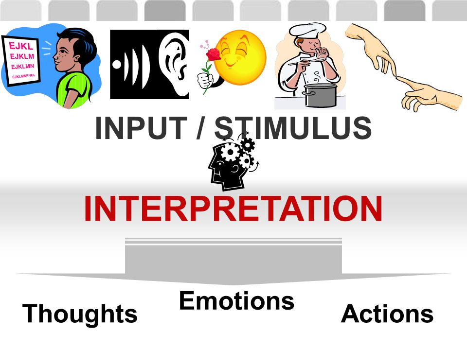 INTERPRETATION INPUT / STIMULUS Emotions Actions Thoughts