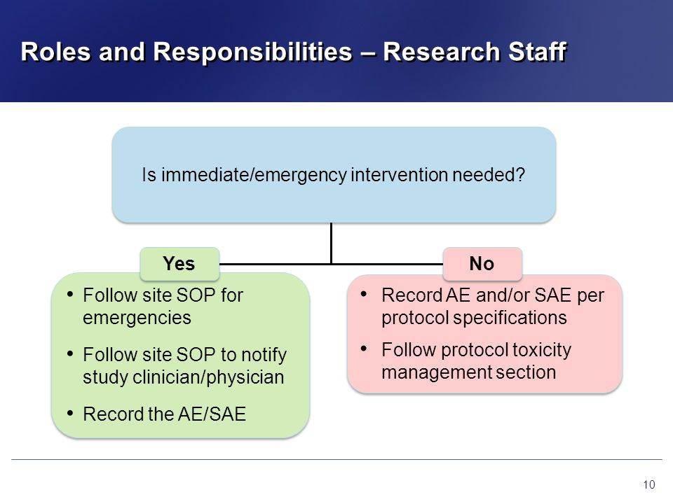 Roles and Responsibilities – Research Staff