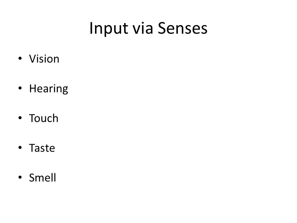 Input via Senses Vision Hearing Touch Taste Smell 1