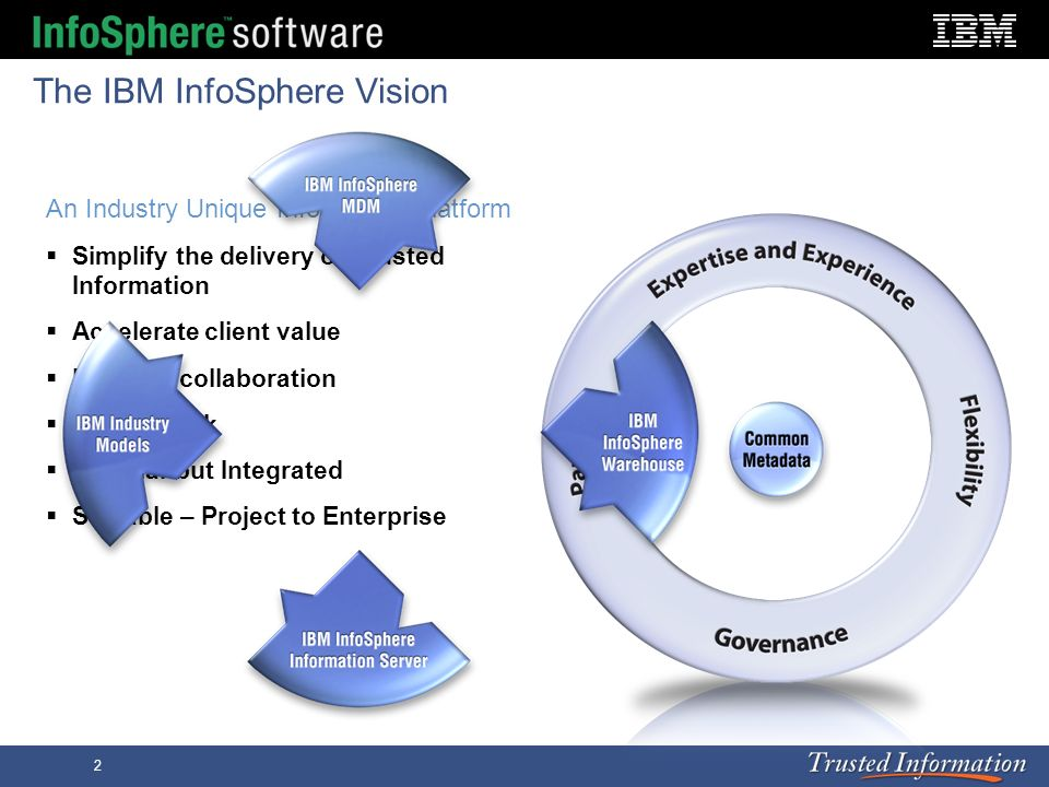 The IBM InfoSphere Vision