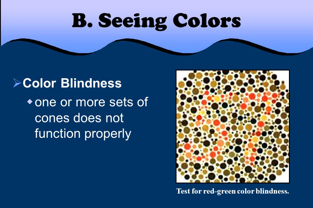 Test for red-green color blindness.