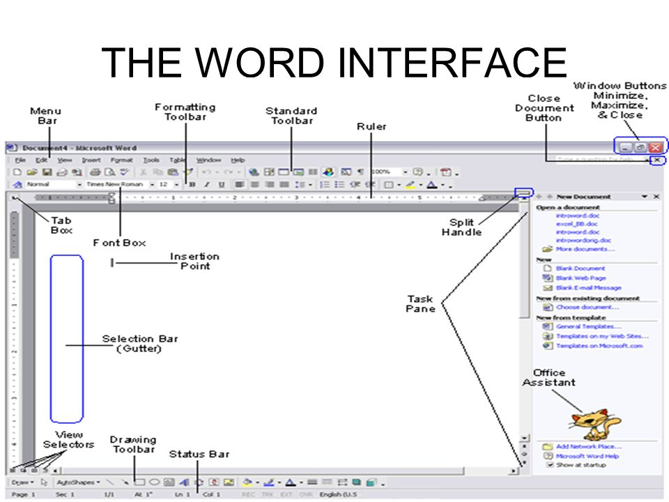 THE WORD INTERFACE
