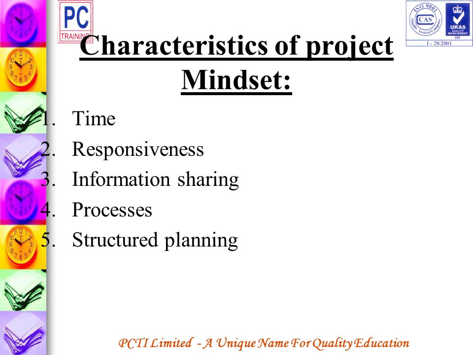 Characteristics of project Mindset: