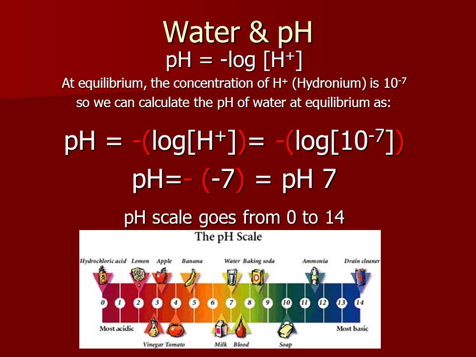 Water & pH pH = -(log[H+])= -(log[10-7]) pH=- (-7) = pH 7