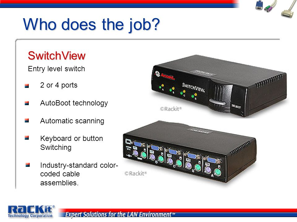 Who does the job SwitchView Entry level switch 2 or 4 ports