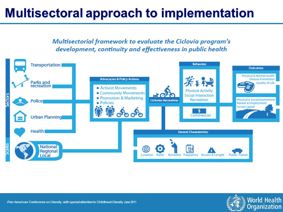 Multisectoral approach to implementation