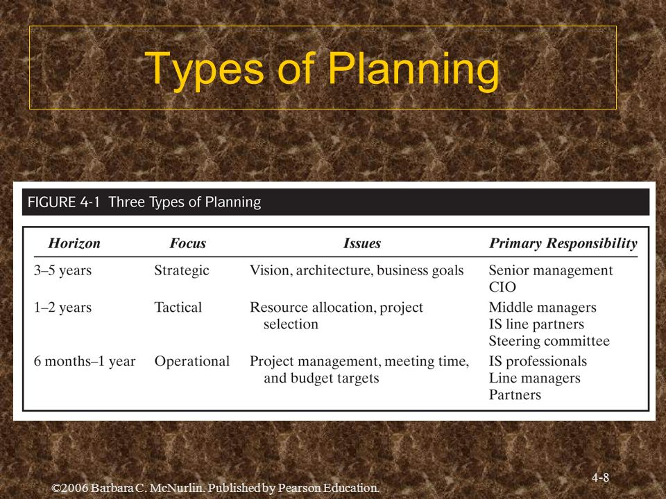 Types of Planning ©2006 Barbara C. McNurlin. Published by Pearson Education.