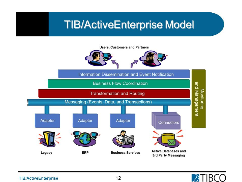 TIB/ActiveEnterprise Model