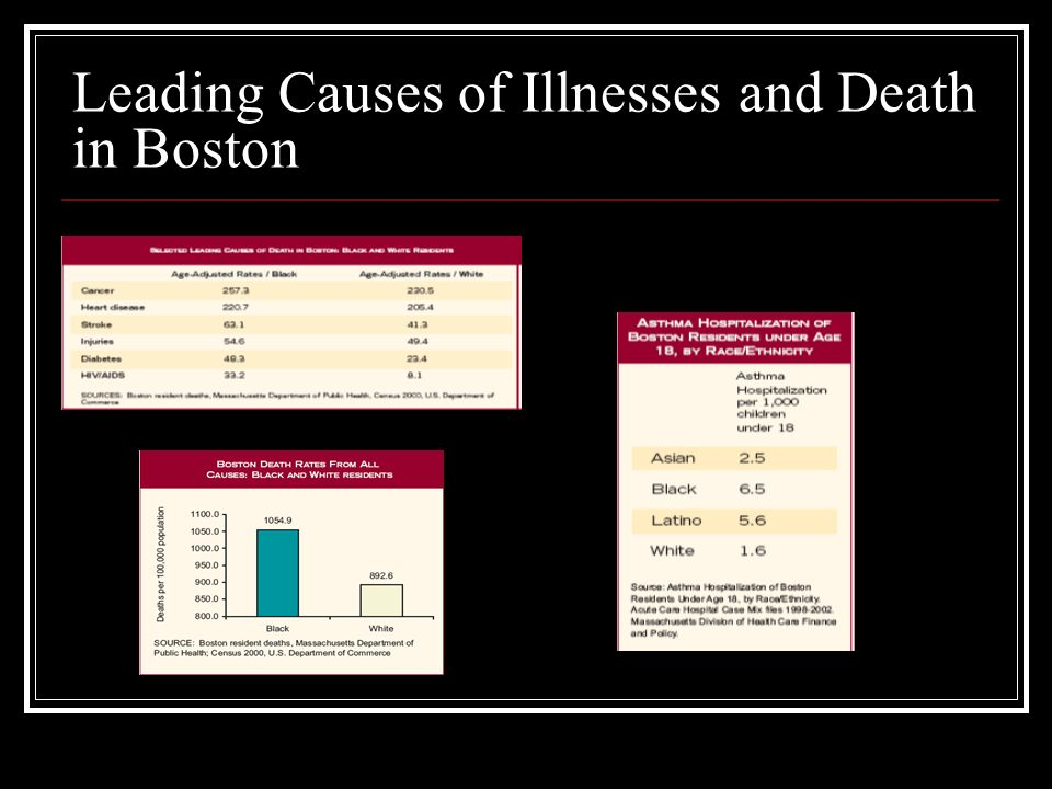 Leading Causes of Illnesses and Death in Boston
