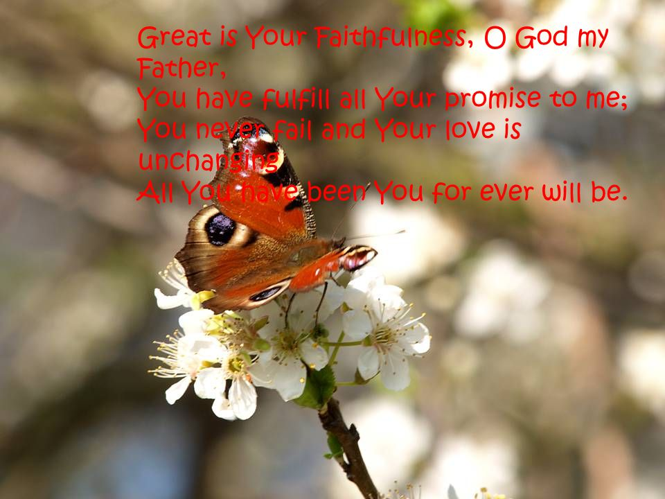 Great is Your Faithfulness, O God my Father,