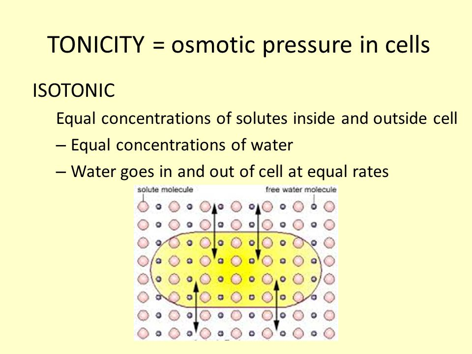 TONICITY = osmotic pressure in cells