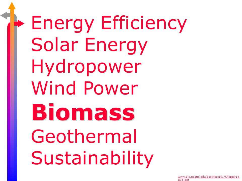 Biomass Energy Efficiency Solar Energy Hydropower Wind Power