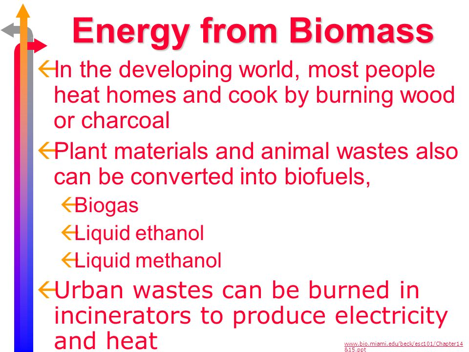 Energy from Biomass In the developing world, most people heat homes and cook by burning wood or charcoal.