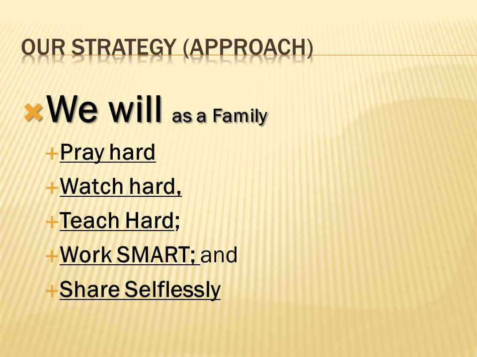 OUR STRATEGY (APPROACH)