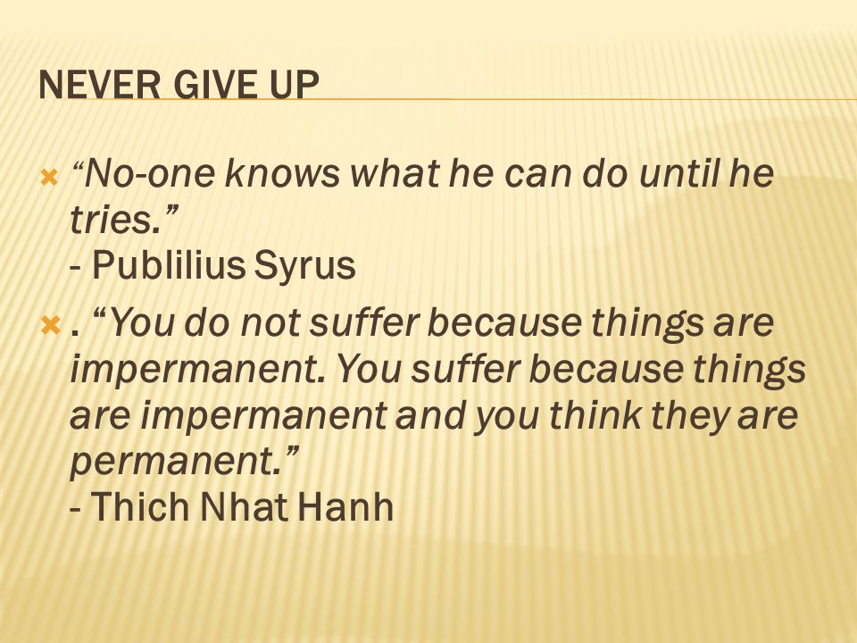 NEVER GIVE UP No-one knows what he can do until he tries. - Publilius Syrus.