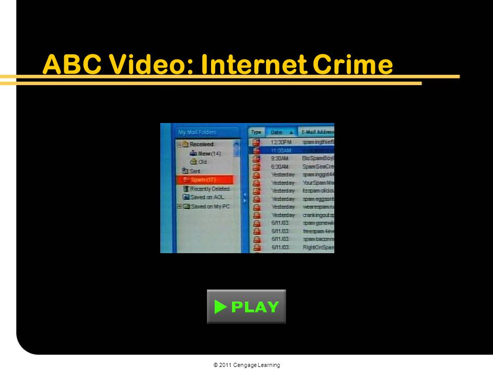 ABC Video: Internet Crime