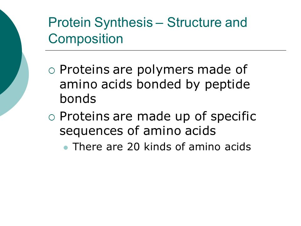 Protein Synthesis – Structure and Composition
