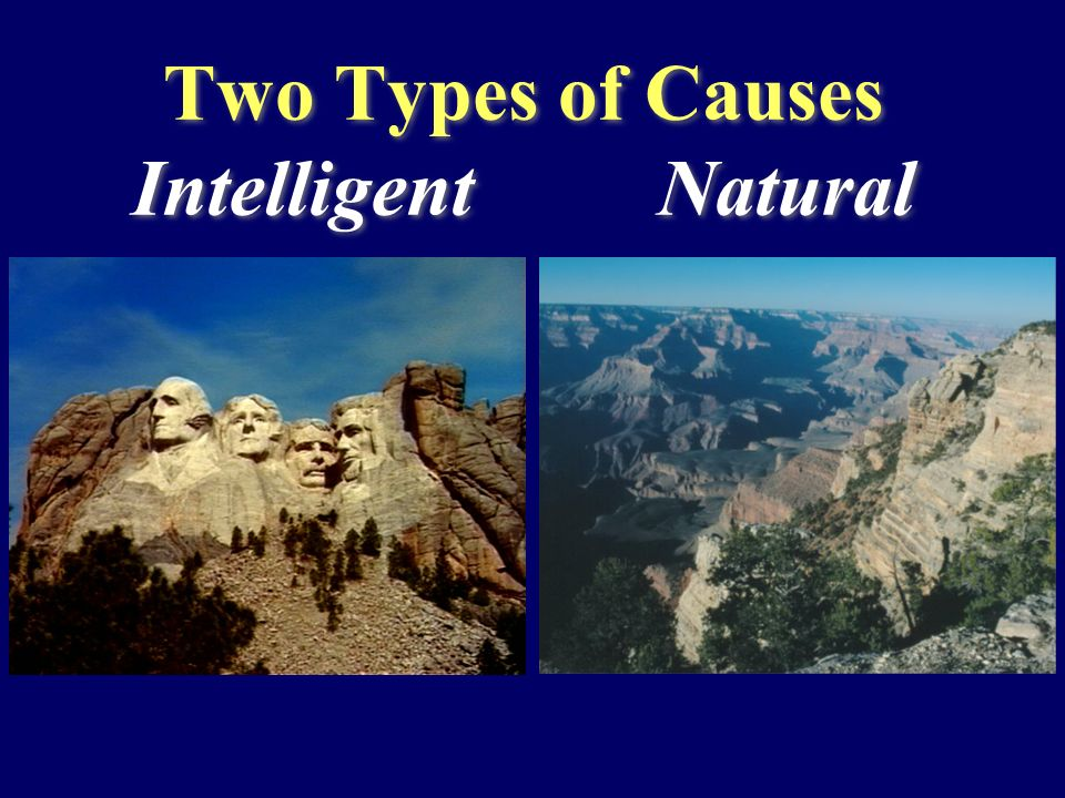 Two Types of Causes Intelligent Natural