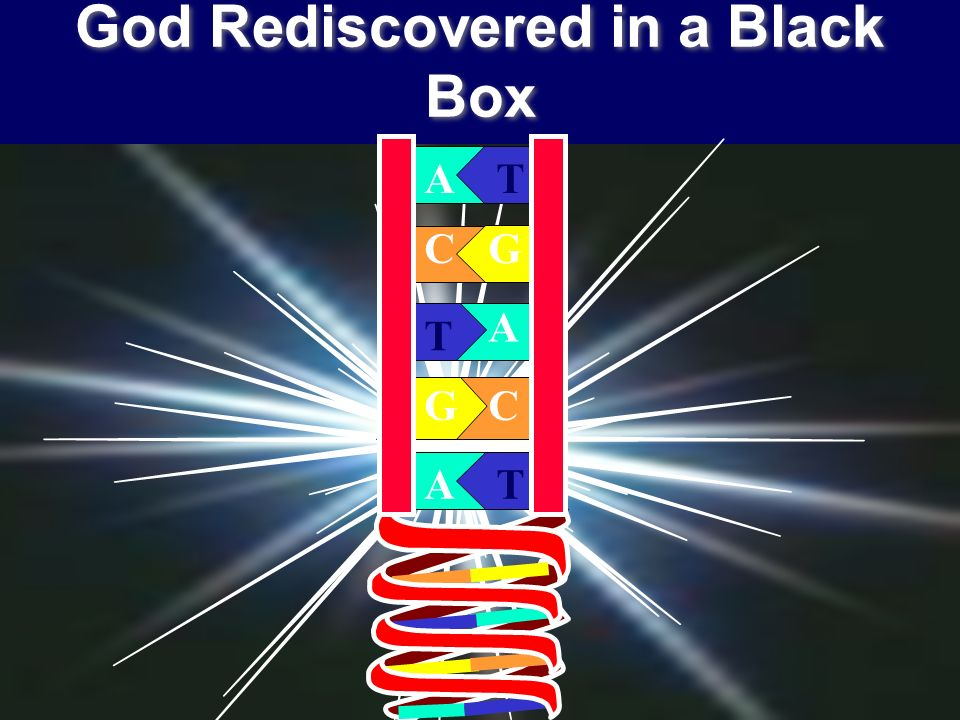 God Rediscovered in a Black Box