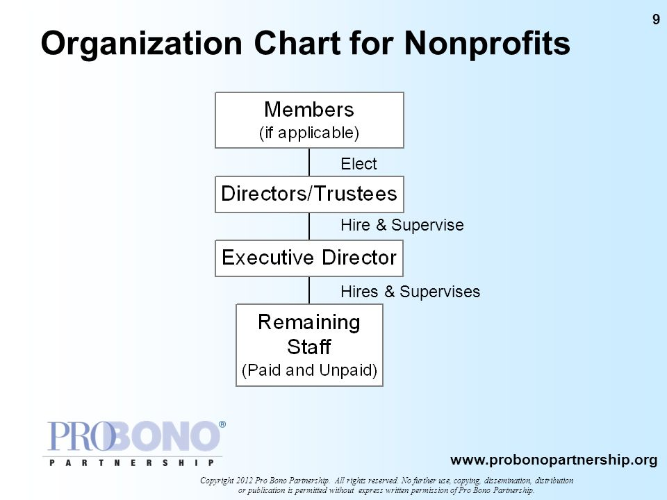 Organization Chart for Nonprofits