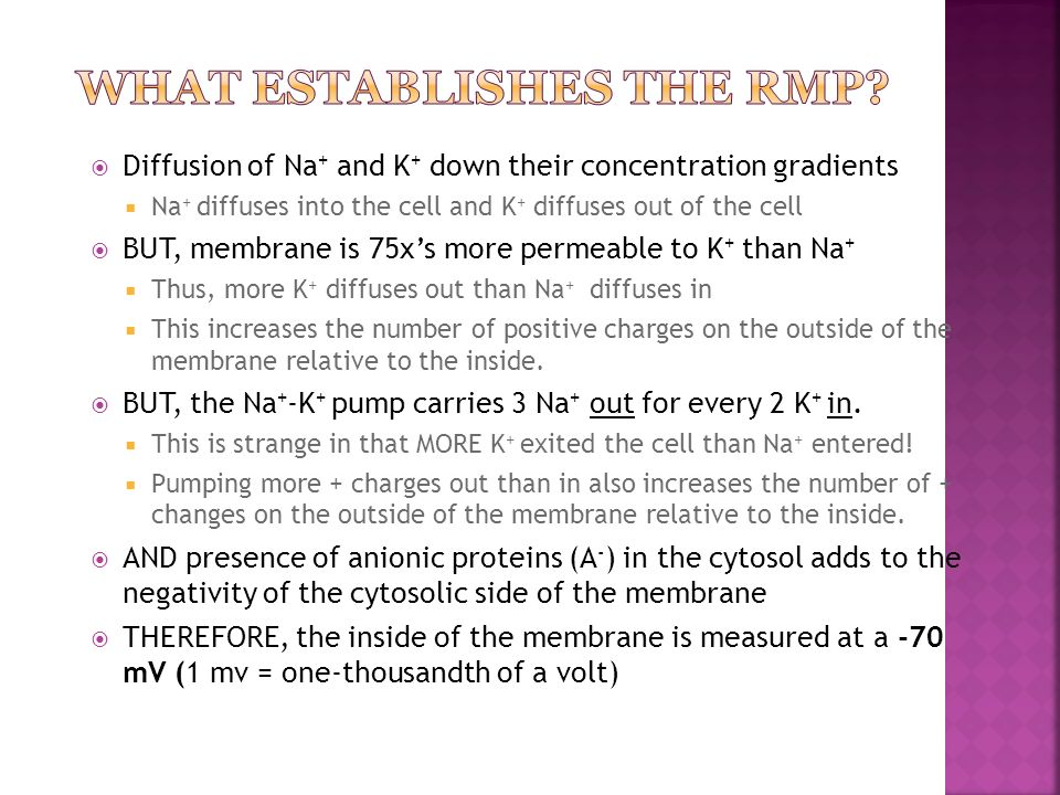 What Establishes the RMP