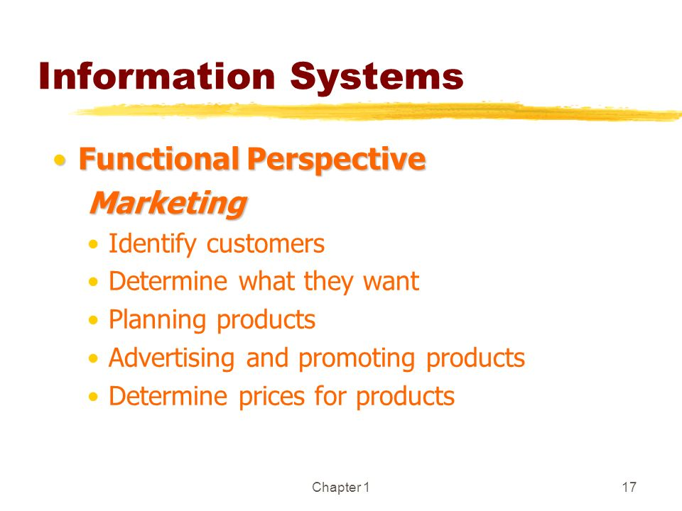 Information Systems Functional Perspective Marketing