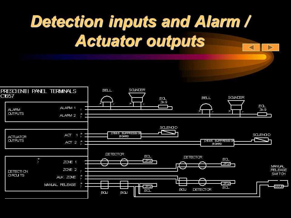 Detection inputs and Alarm / Actuator outputs