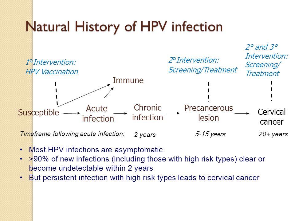 hpv vaccine history)