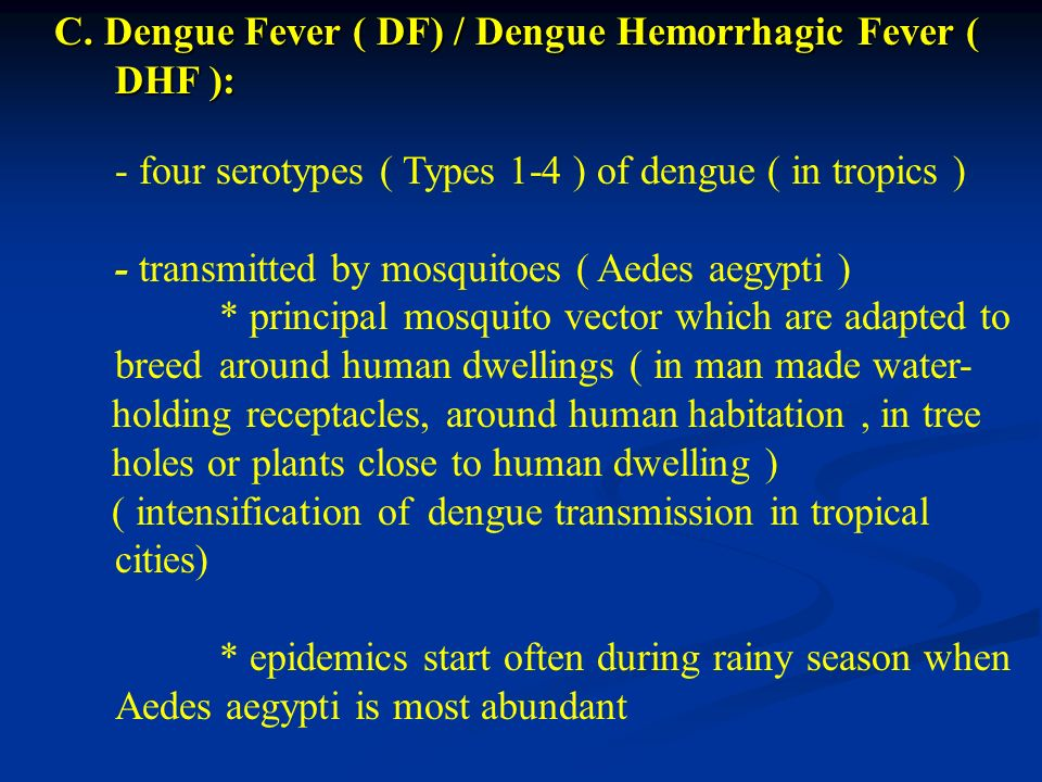 - transmitted by mosquitoes ( Aedes aegypti )