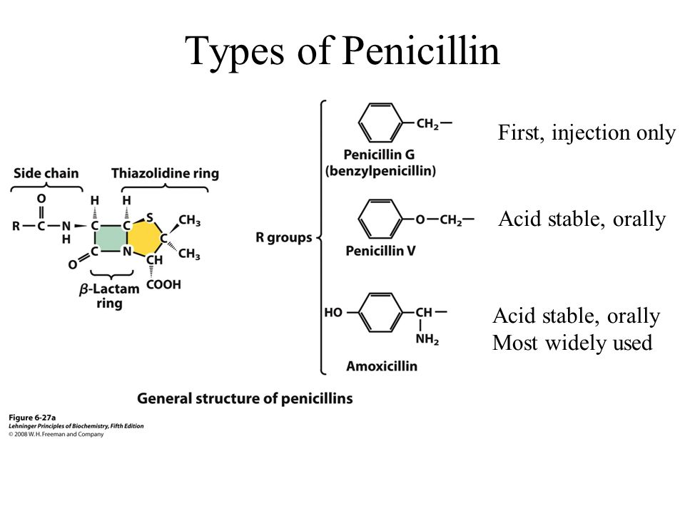 Types of Penicillin First, injection only Acid stable, orally