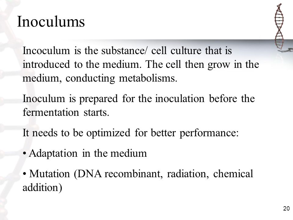 Inoculums Incoculum is the substance/ cell culture that is introduced to the medium. The cell then grow in the medium, conducting metabolisms.