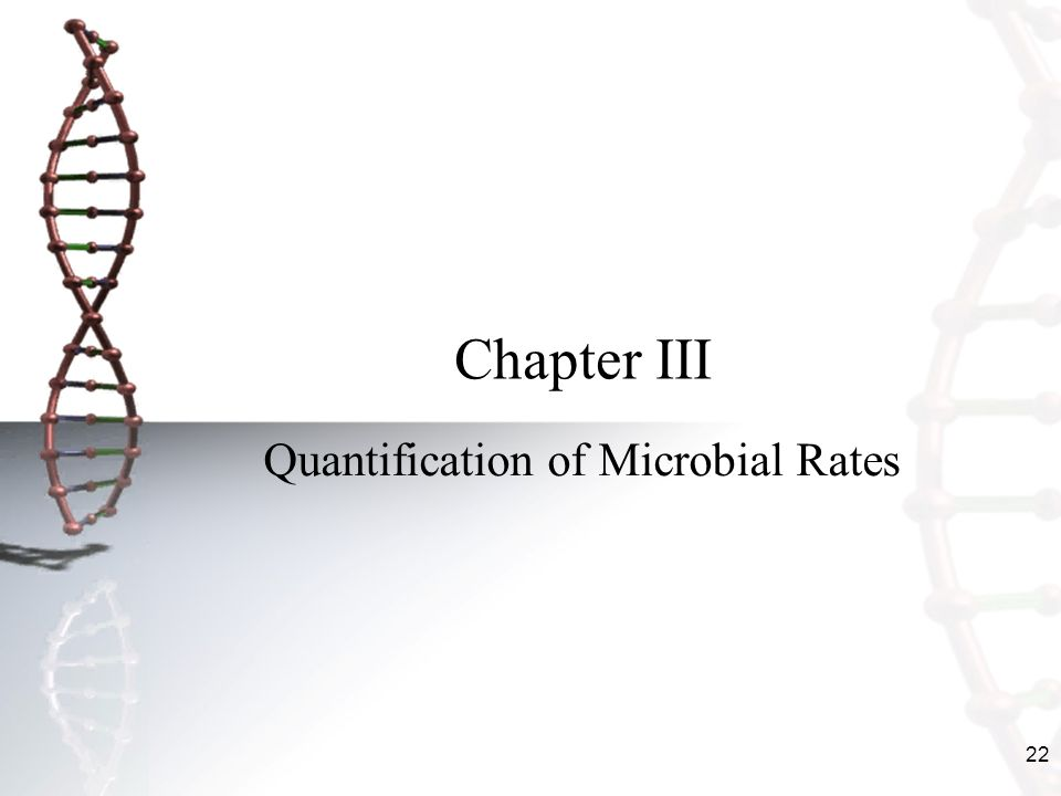 Quantification of Microbial Rates