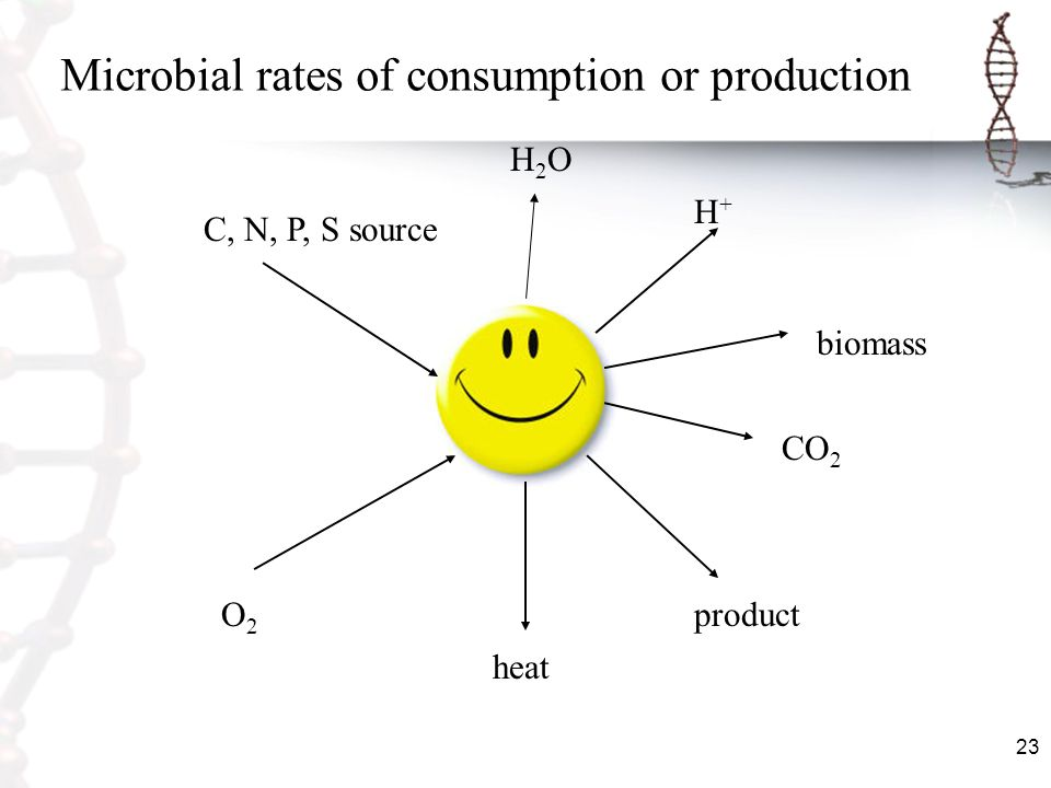 Microbial rates of consumption or production