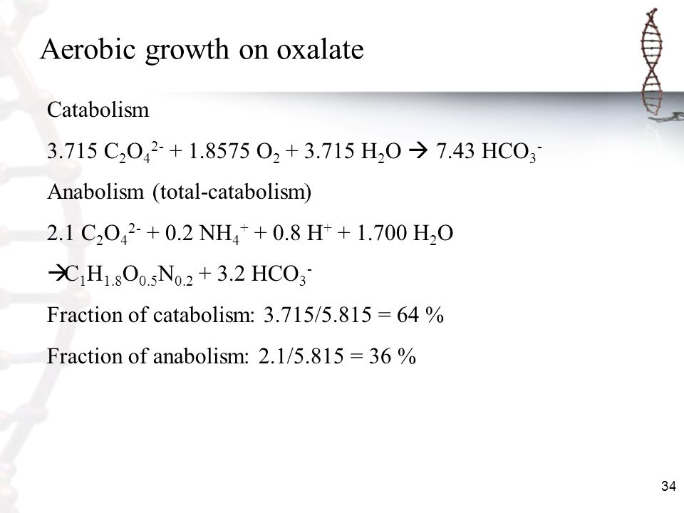 Aerobic growth on oxalate