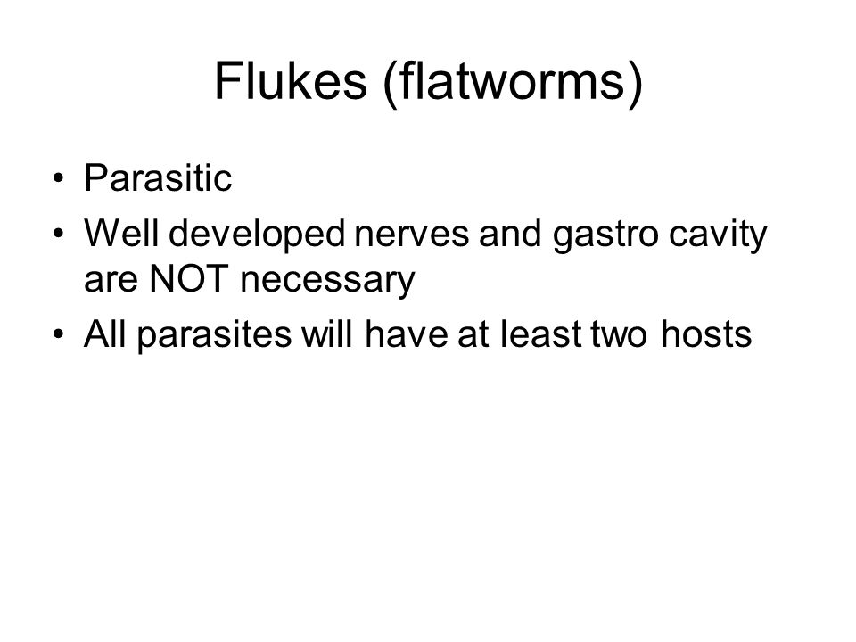 Flukes (flatworms) Parasitic