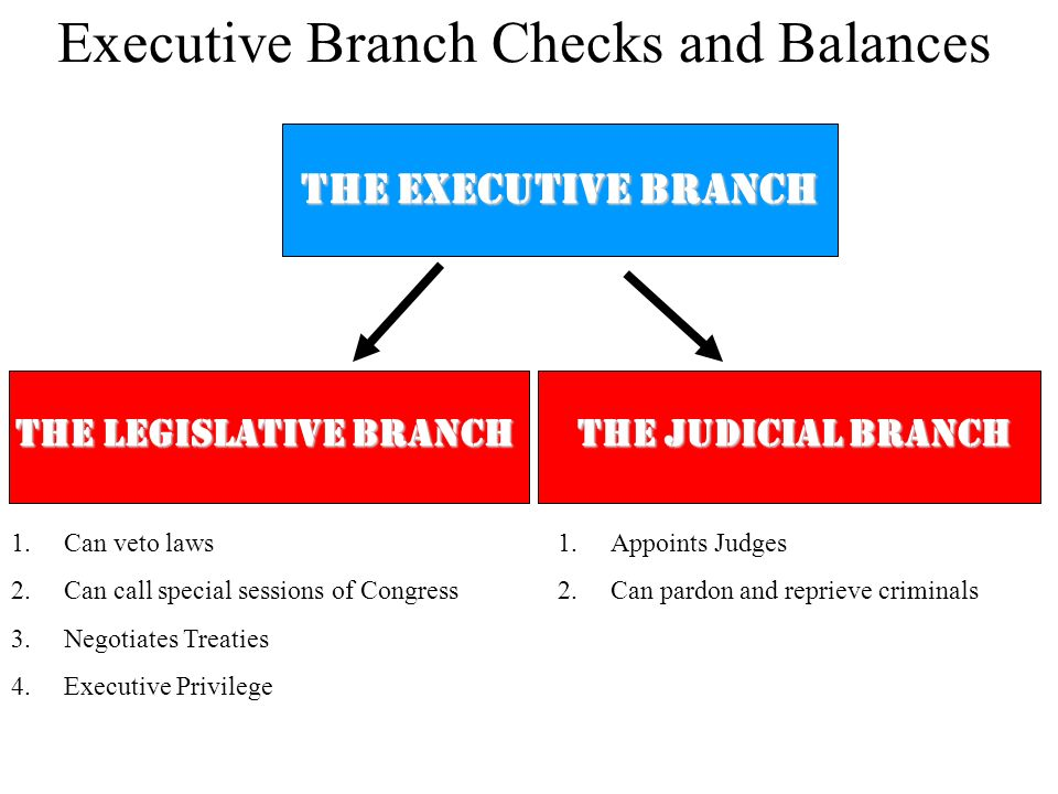 Executive Branch Checks and Balances