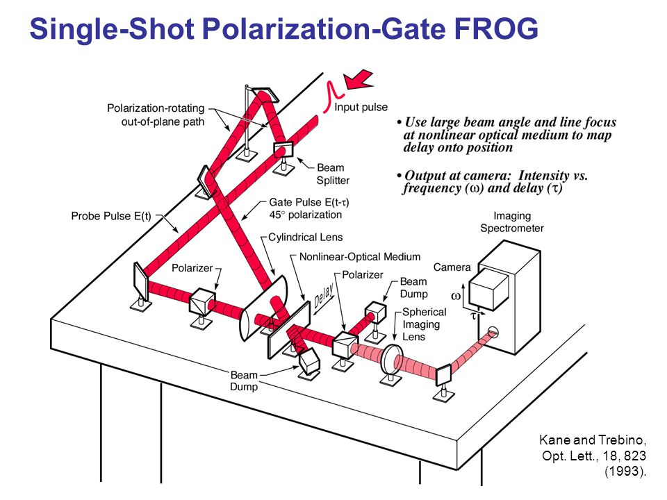 Single-Shot Polarization-Gate FROG