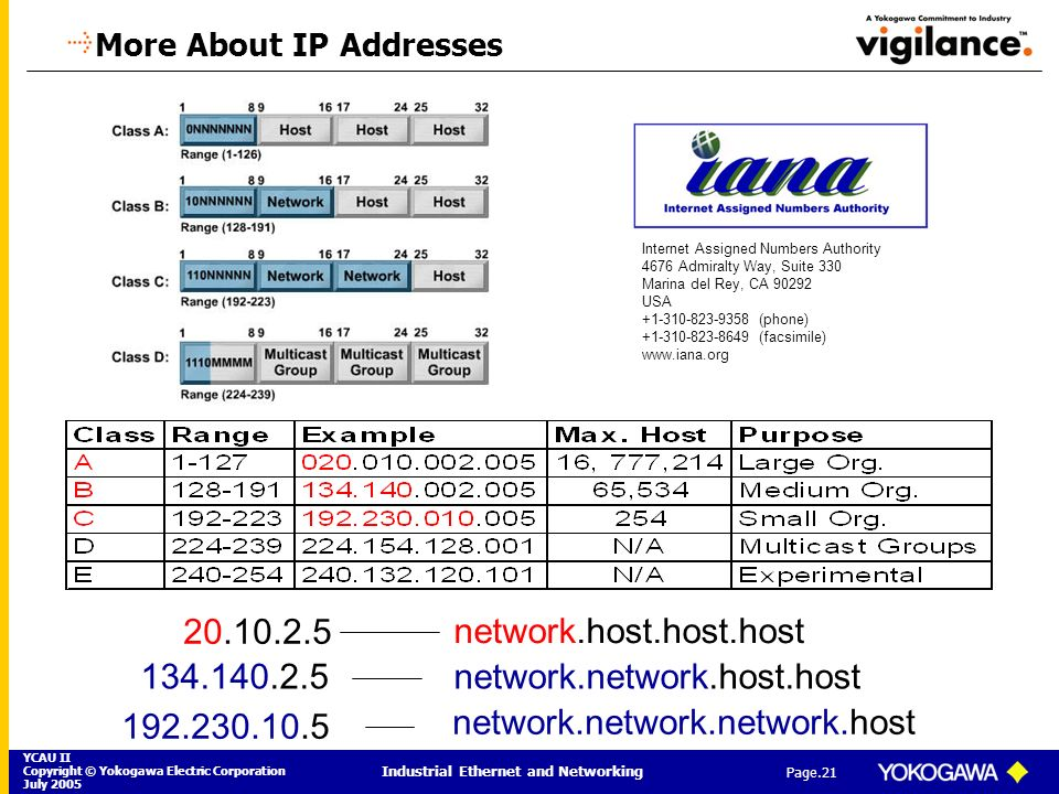 More About IP Addresses