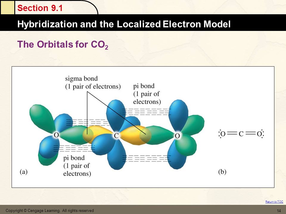 The Orbitals for CO2 Copyright © Cengage Learning. All rights reserved