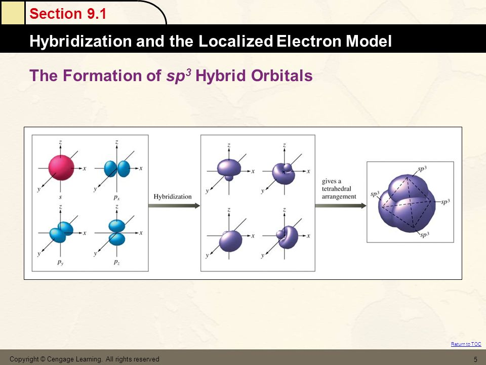 The Formation of sp3 Hybrid Orbitals