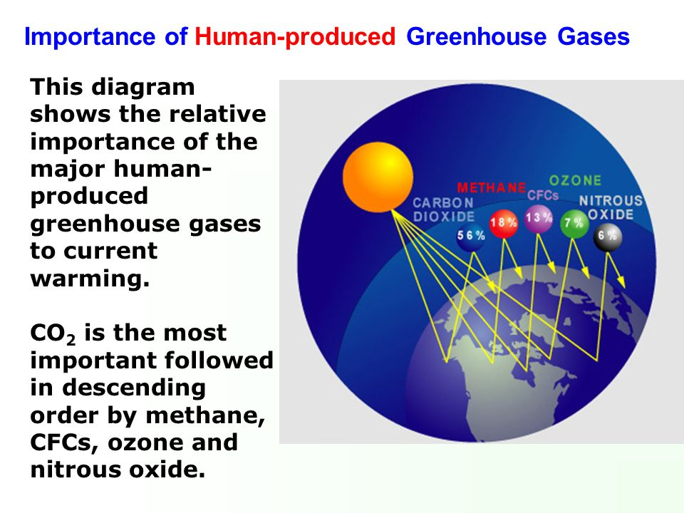 Importance of Human-produced Greenhouse Gases