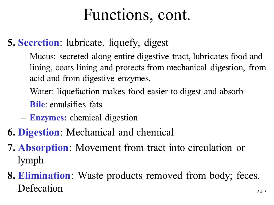 Functions, cont. 5. Secretion: lubricate, liquefy, digest