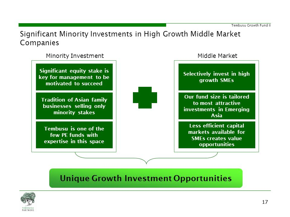 Unique Growth Investment Opportunities