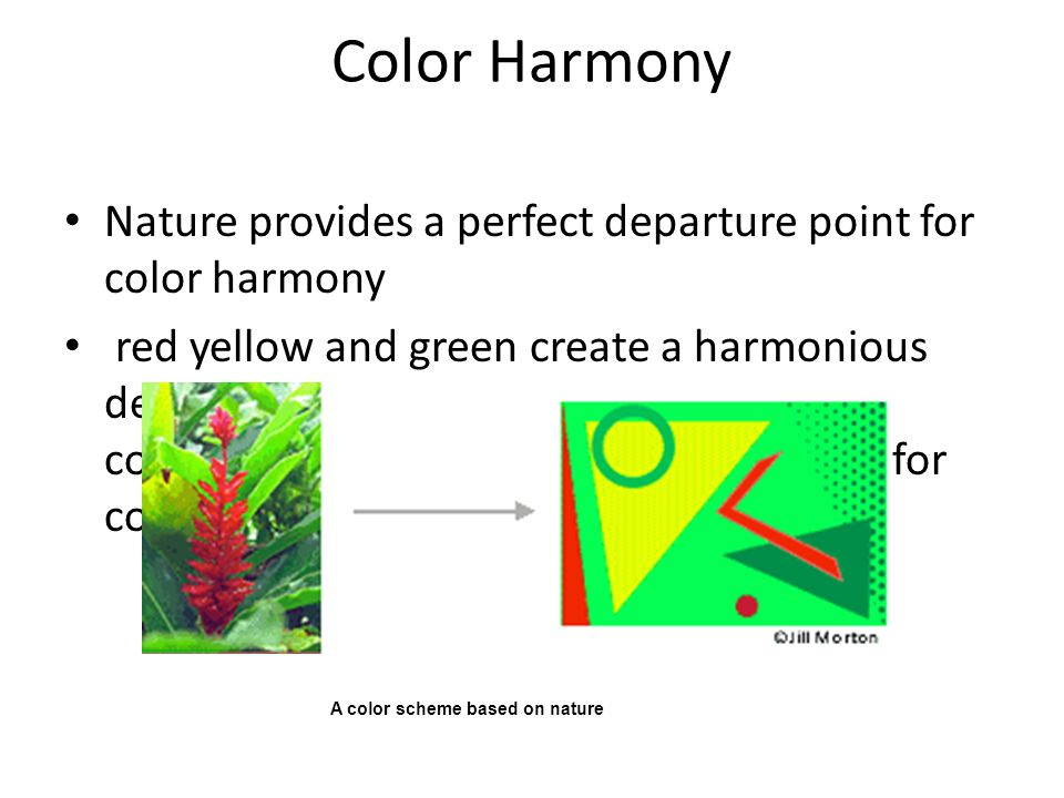 Color Harmony Nature provides a perfect departure point for color harmony.