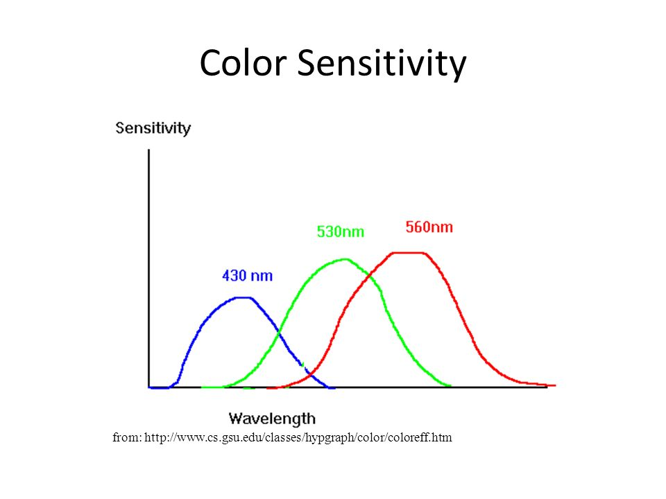 Color Sensitivity from: http://www.cs.gsu.edu/classes/hypgraph/color/coloreff.htm