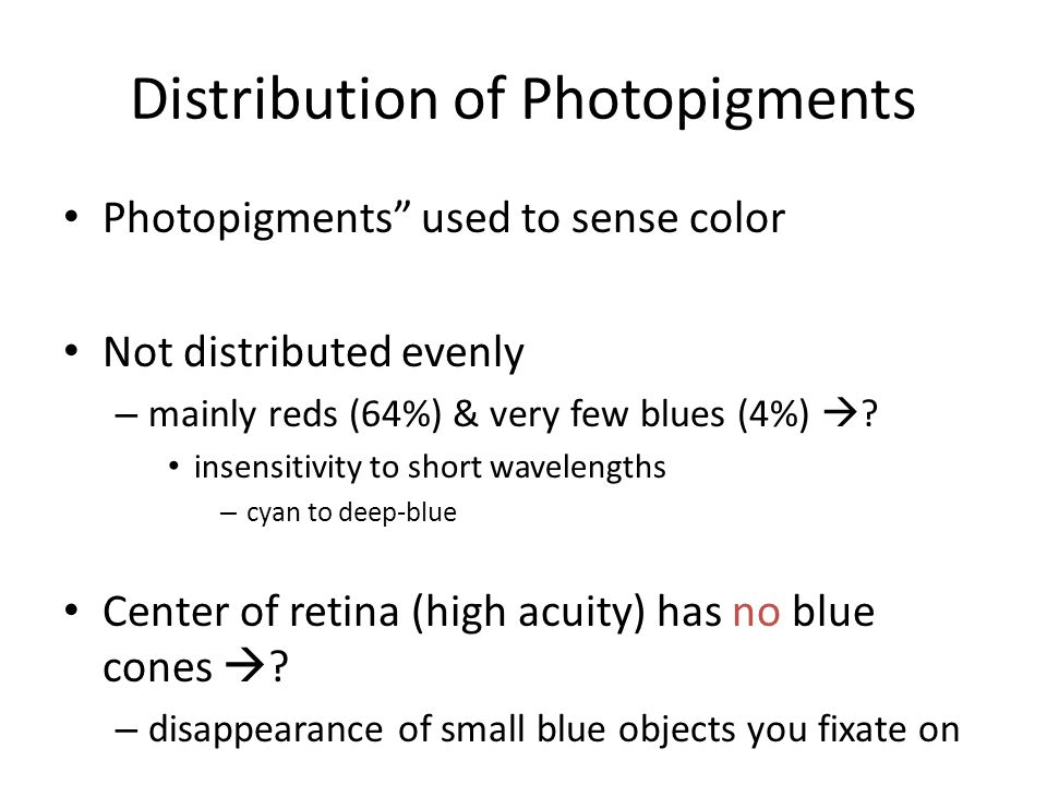 Distribution of Photopigments