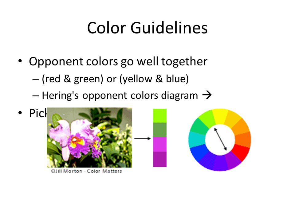 Color Guidelines Opponent colors go well together