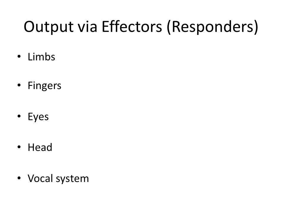Output via Effectors (Responders)