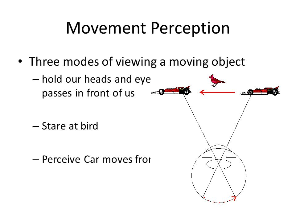 Movement Perception Three modes of viewing a moving object